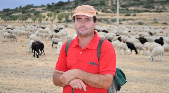 valentín argandoña, pastor, ganadería, ovejas