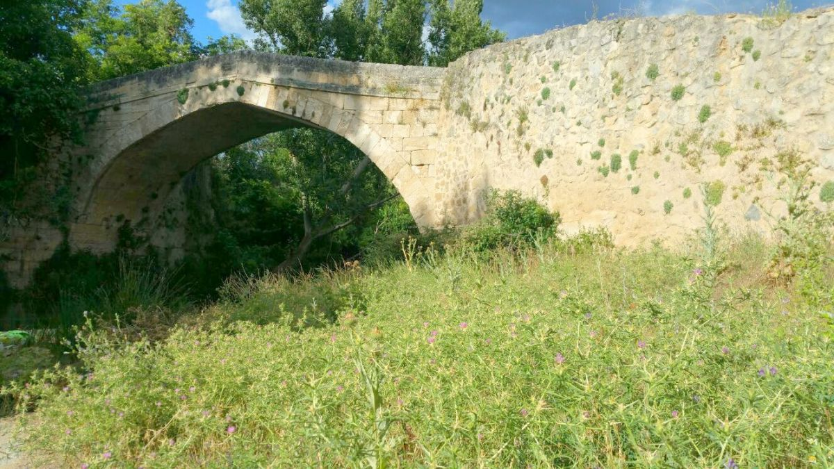 Las malas hierbas hacen prácticamente imposible bañarse en el Puente Liende