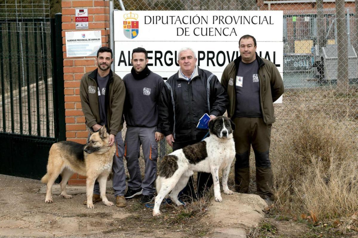 En Priego también se adoptan animales