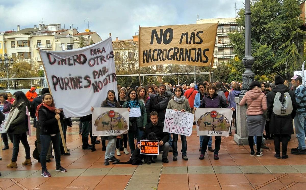 Vecinos de Priego se unen a la manifestación contra las macrogranjas que ha reunido a cientos de personas en Cuenca